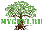 mygeni.ru